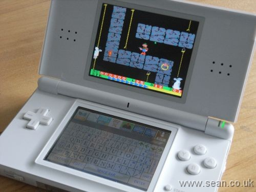 Photo of Nintendo DS running Roland on the Ropes